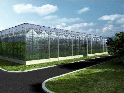 中国农业大学涿州基地现代化智能温室大棚项目中标喜讯